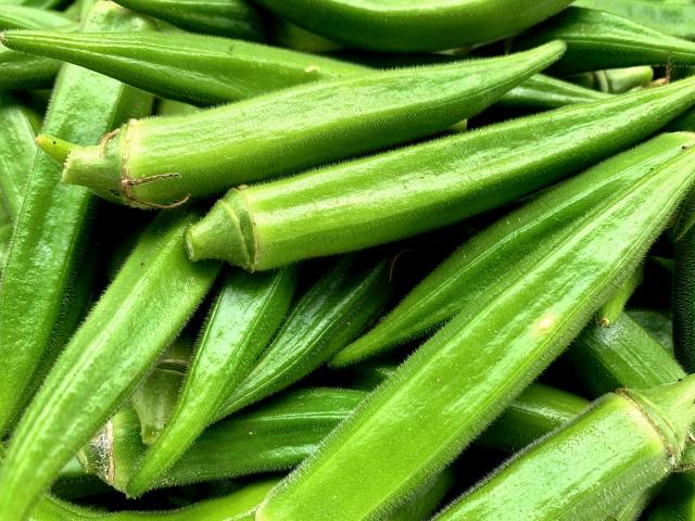 夏野菜のオクラ
