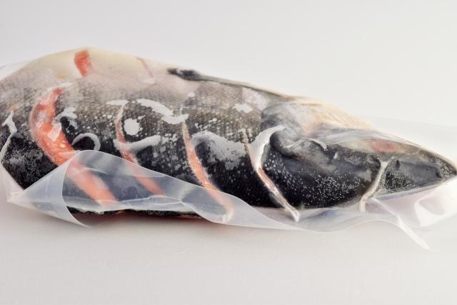 鮭の姿切りをフリージングパックで冷凍保存