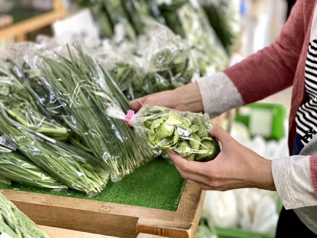スーパーで野菜を安く購入。