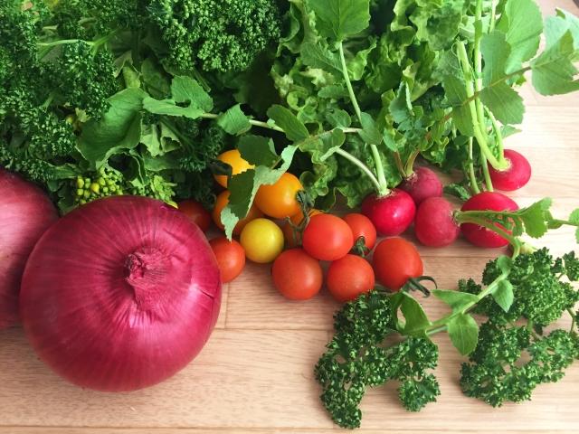 野菜色々各種
